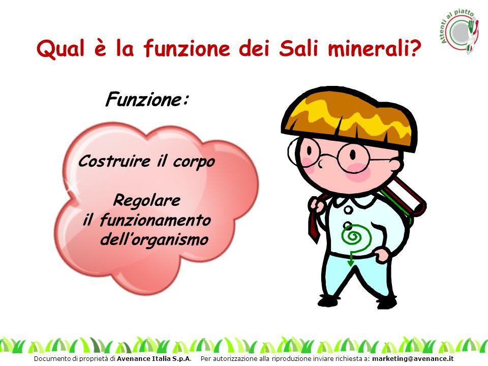 Qual è la funzione dei Sali minerali il funzionamento dell'organismo