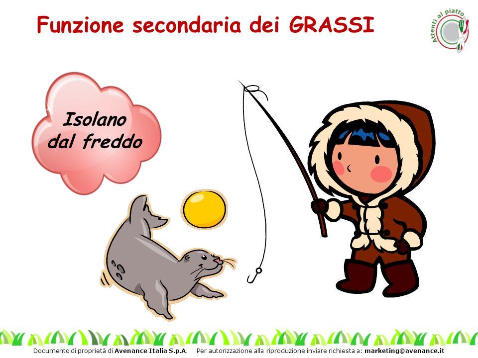 Funzione secondaria dei GRASSI