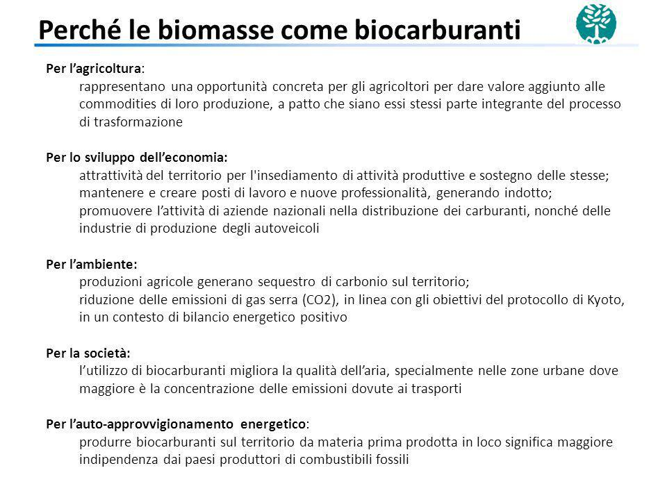 Perché le biomasse come biocarburanti