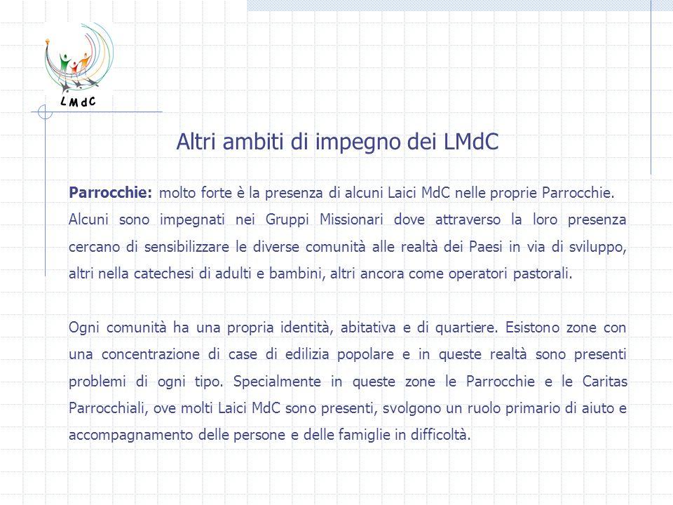 Altri ambiti di impegno dei LMdC