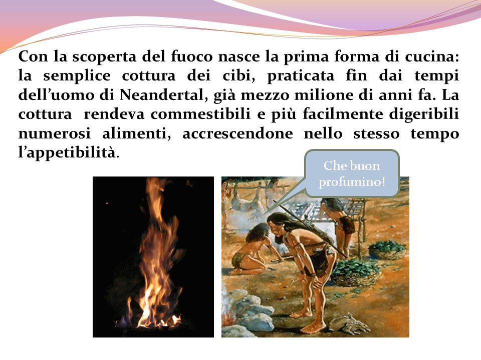 Con la scoperta del fuoco nasce la prima forma di cucina: la semplice cottura dei cibi, praticata fin dai tempi dell'uomo di Neandertal, già mezzo milione di anni fa. La cottura rendeva commestibili e più facilmente digeribili numerosi alimenti, accrescendone nello stesso tempo l'appetibilità.