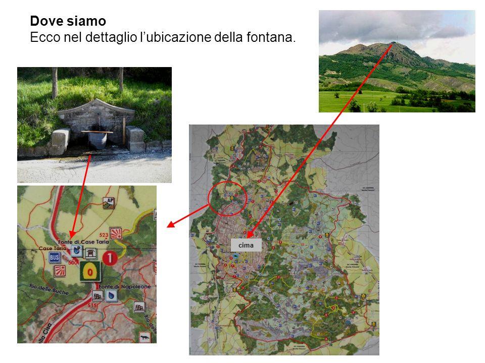 Ecco nel dettaglio l'ubicazione della fontana.