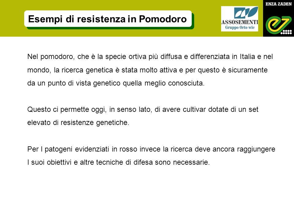 Esempi di resistenza in Pomodoro