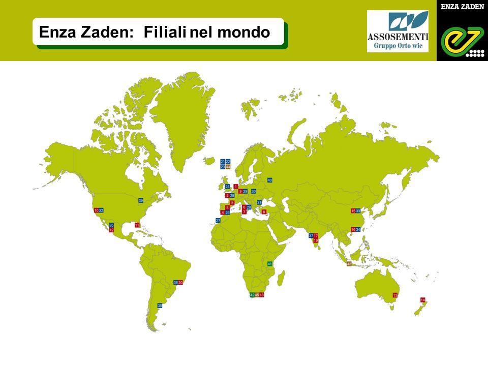 Enza Zaden: Filiali nel mondo
