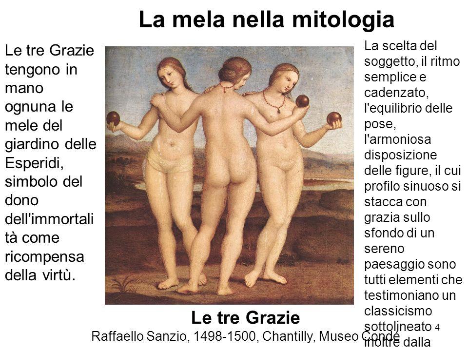Raffaello Sanzio, 1498-1500, Chantilly, Museo Condé