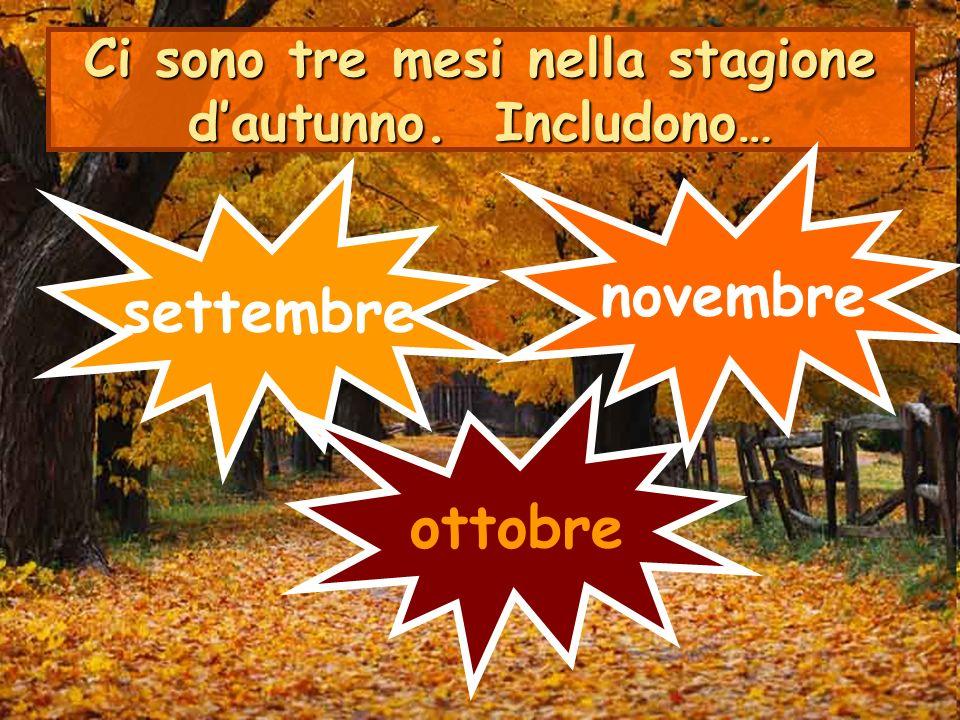 Ci sono tre mesi nella stagione d'autunno. Includono…