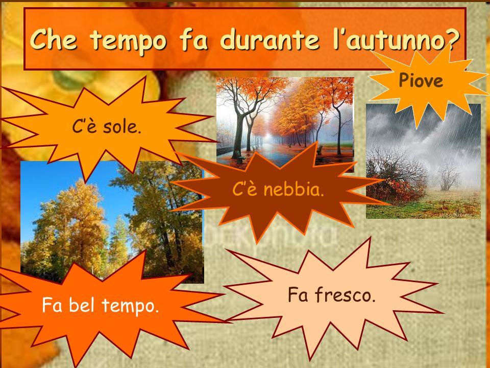 Che tempo fa durante l'autunno