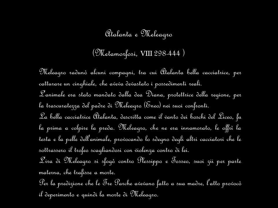 Atalanta e Meleagro (Metamorfosi, VIII 298-444 )