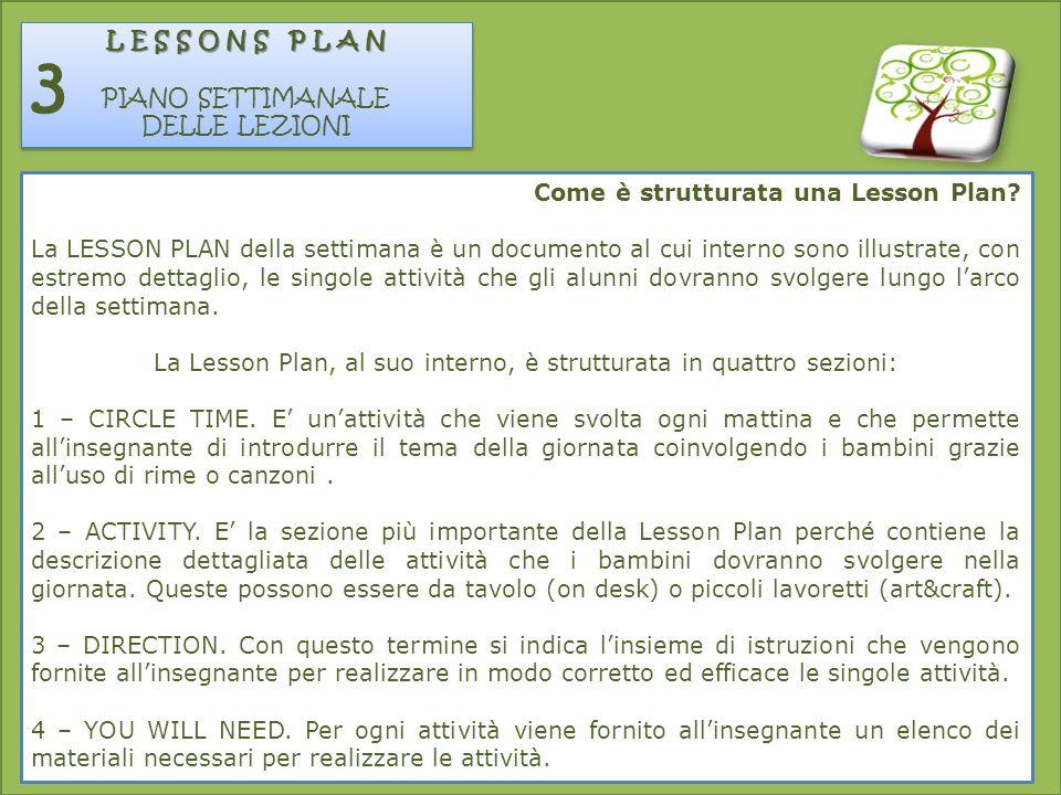 La Lesson Plan, al suo interno, è strutturata in quattro sezioni: