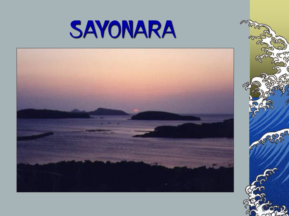SAYONARA The next couple of slides are a comparison of the countries that we will be visiting.