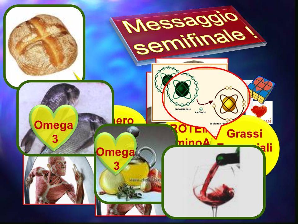 Messaggio semifinale ! Zucchero Omega RAPIDO PROTEINE: 3 Grassi