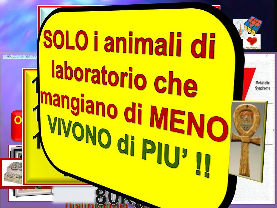   SOLO i animali di laboratorio che mangiano di MENO 18%