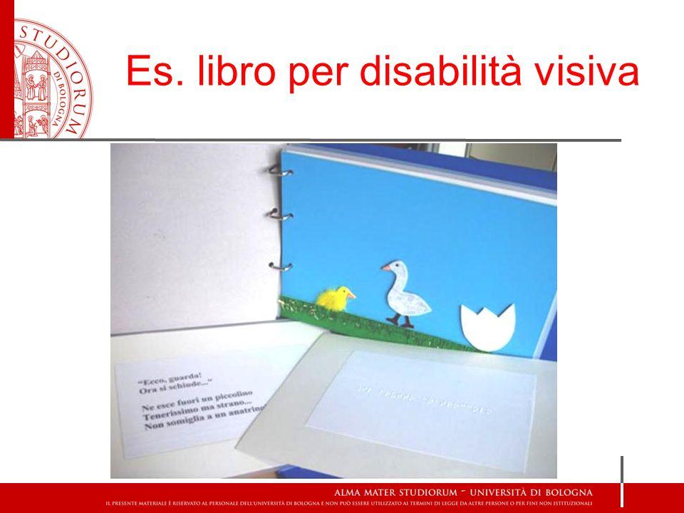Es. libro per disabilità visiva