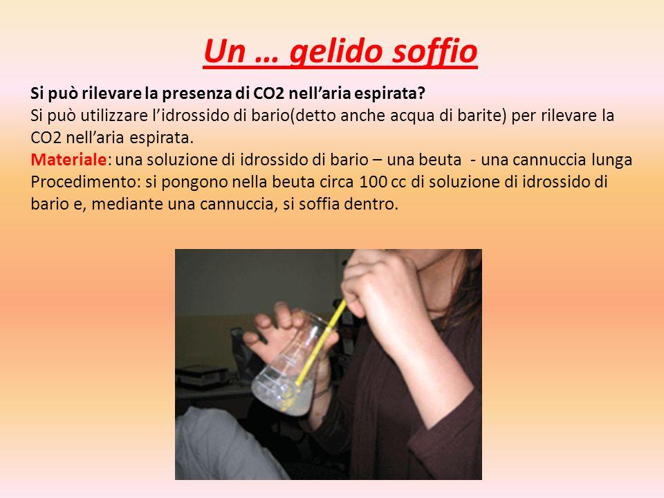 Un … gelido soffio Si può rilevare la presenza di CO2 nell'aria espirata