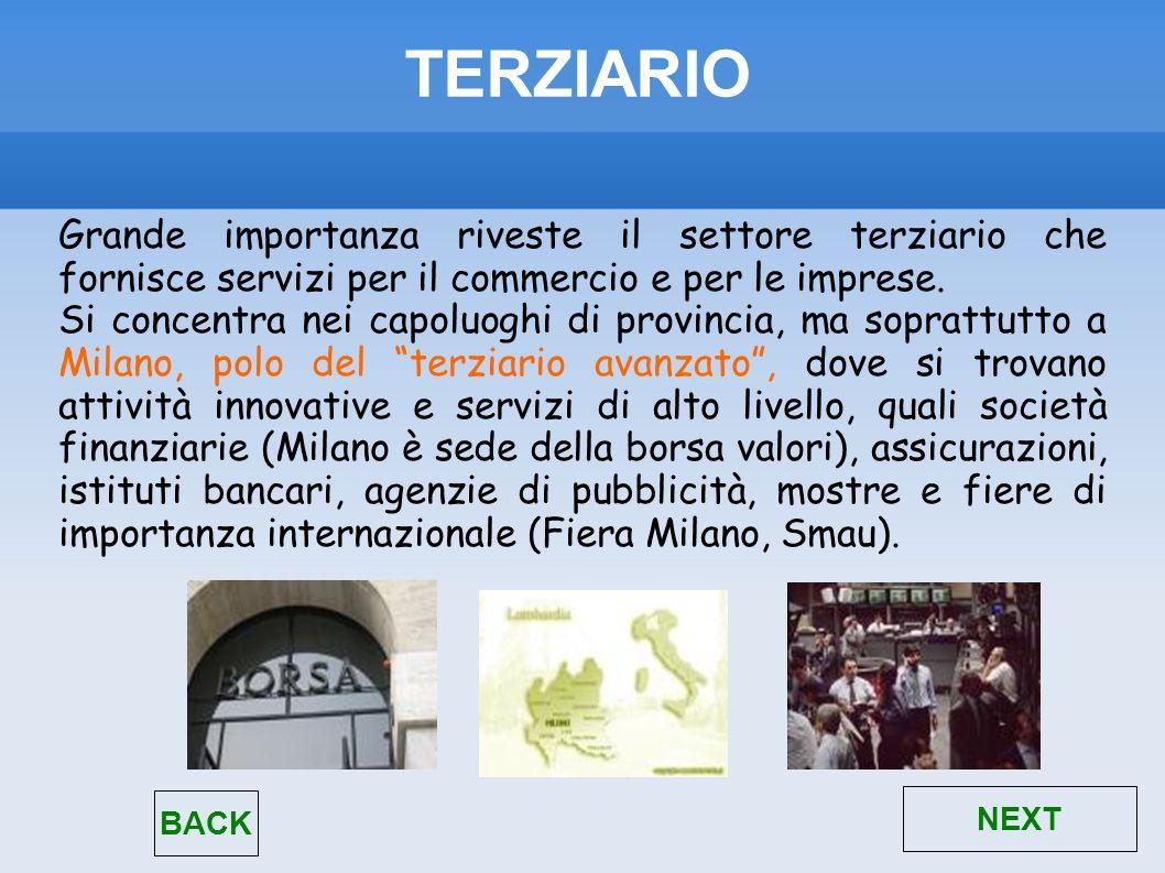 TERZIARIO Grande importanza riveste il settore terziario che fornisce servizi per il commercio e per le imprese.