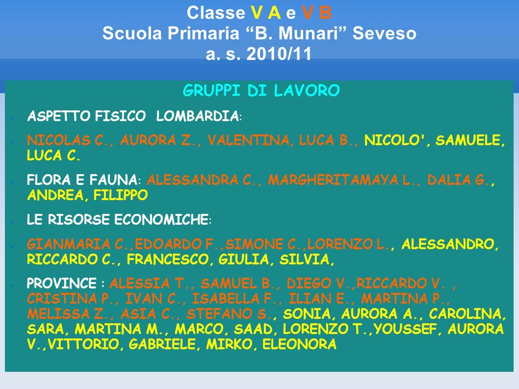 Classe V A e V B Scuola Primaria B. Munari Seveso a. s. 2010/11