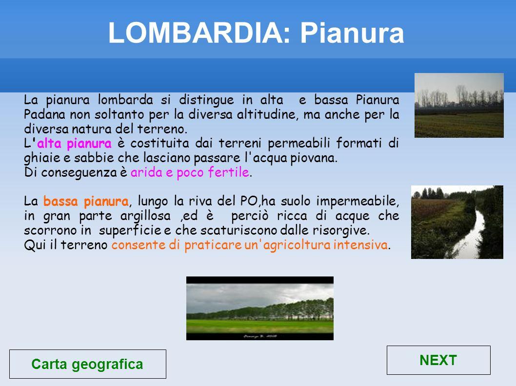 LOMBARDIA: Pianura NEXT Carta geografica