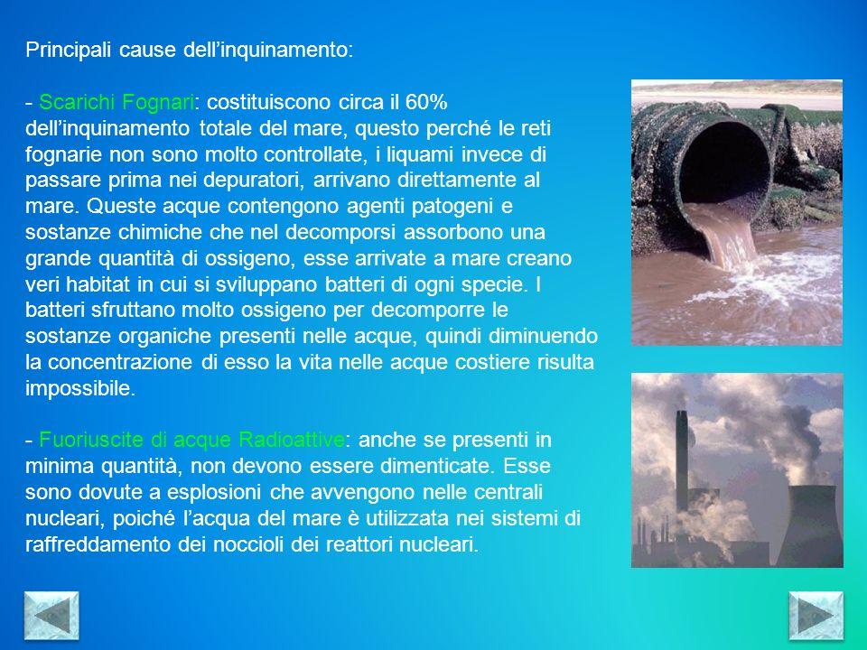 Principali cause dell'inquinamento: