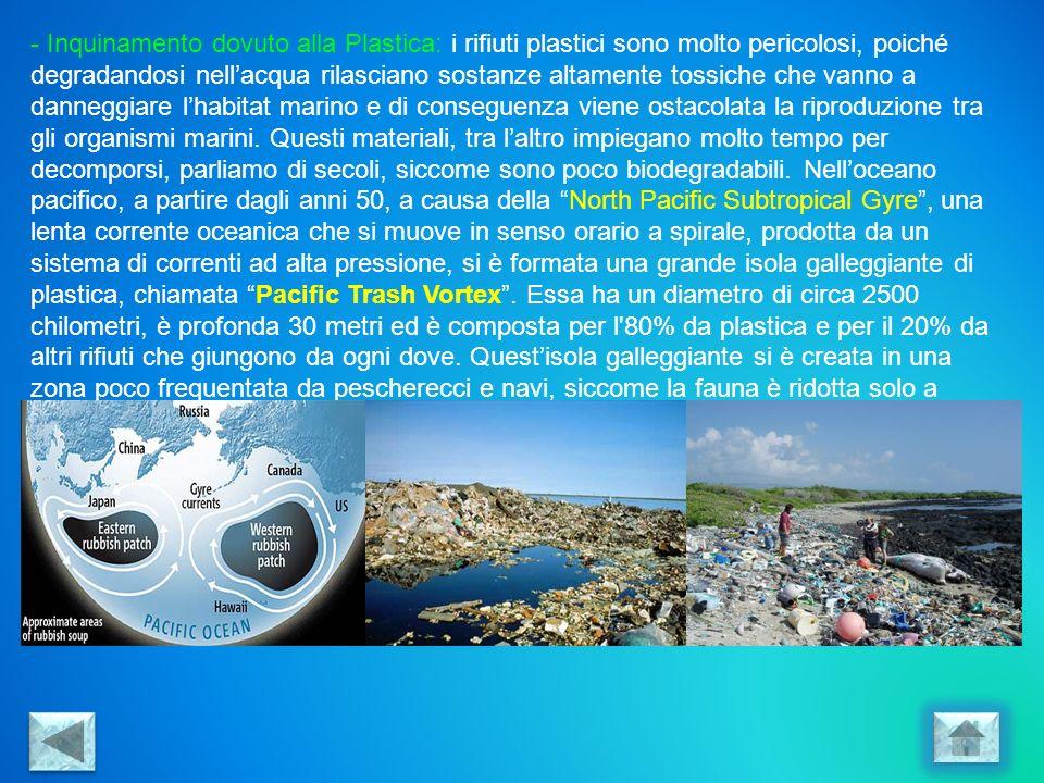 Inquinamento dovuto alla Plastica: i rifiuti plastici sono molto pericolosi, poiché degradandosi nell'acqua rilasciano sostanze altamente tossiche che vanno a danneggiare l'habitat marino e di conseguenza viene ostacolata la riproduzione tra gli organismi marini.