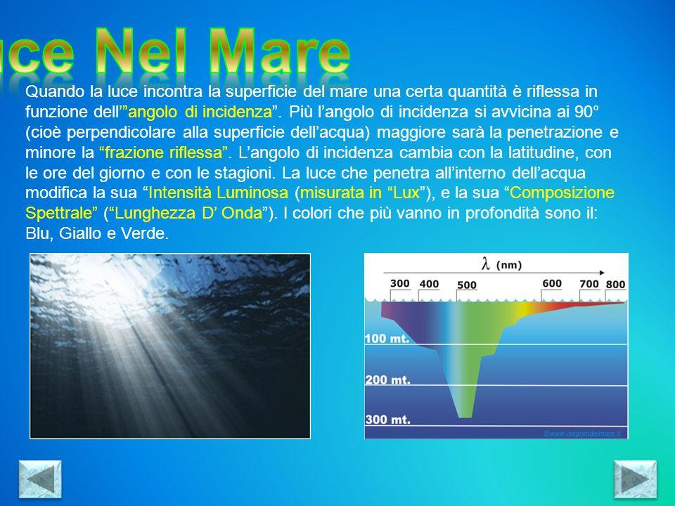 Luce Nel Mare
