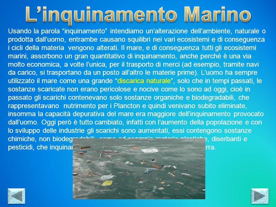 L'inquinamento Marino