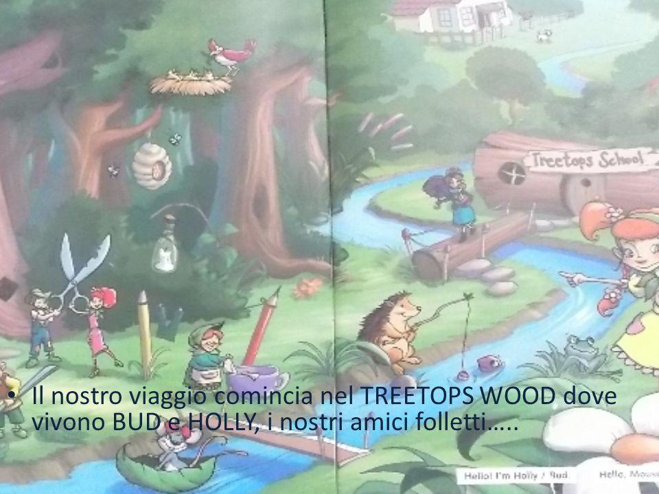 Il nostro viaggio comincia nel TREETOPS WOOD dove vivono BUD e HOLLY, i nostri amici folletti…..