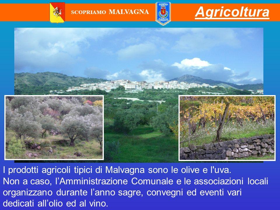 Agricoltura SCOPRIAMO MALVAGNA. I prodotti agricoli tipici di Malvagna sono le olive e l uva.