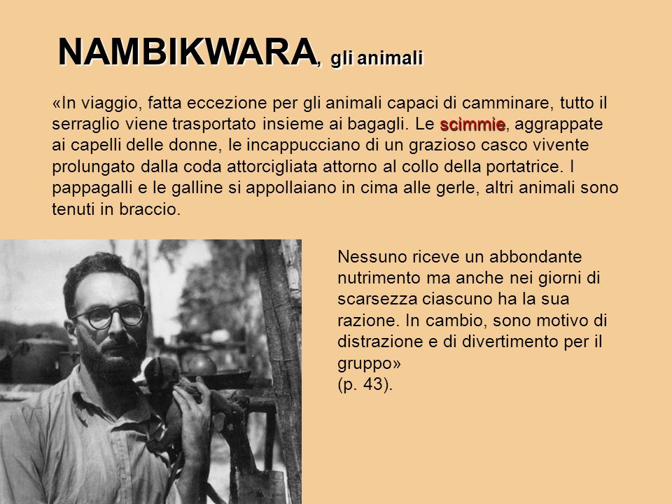 NAMBIKWARA, gli animali