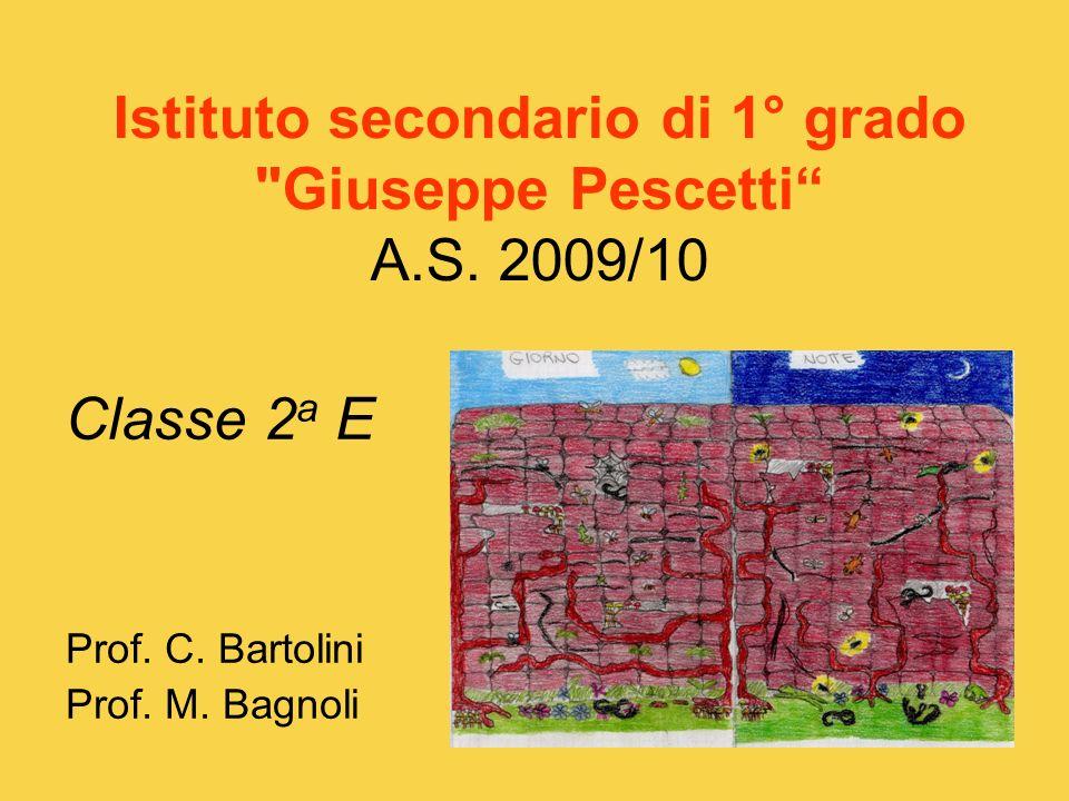Istituto secondario di 1° grado Giuseppe Pescetti A.S. 2009/10