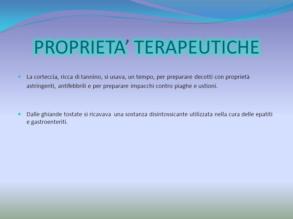 PROPRIETA' TERAPEUTICHE