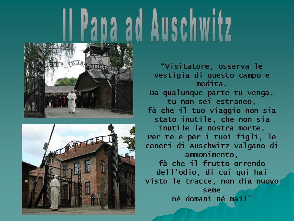 Il Papa ad Auschwitz Visitatore, osserva le vestigia di questo campo e medita. Da qualunque parte tu venga, tu non sei estraneo,