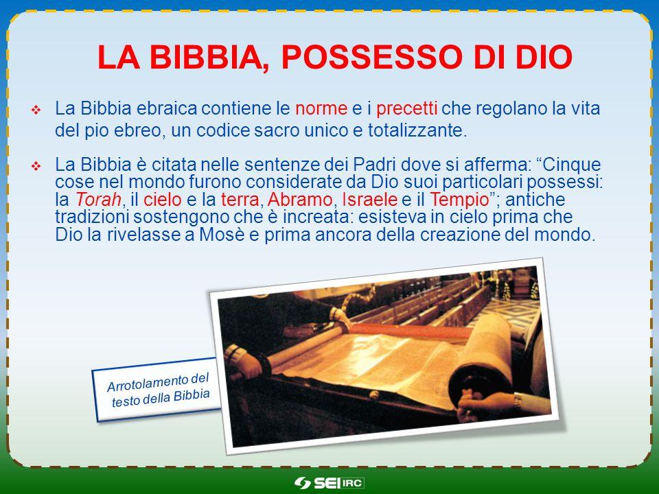 La bibbia, possesso di dio