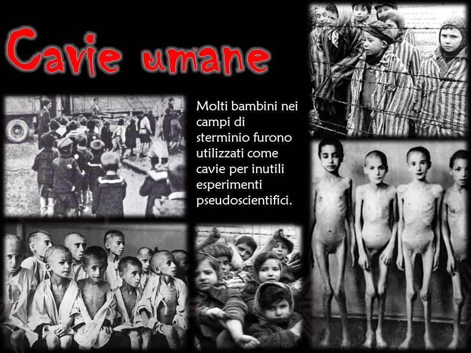 Cavie umane Molti bambini nei campi di sterminio furono utilizzati come cavie per inutili esperimenti pseudoscientifici.