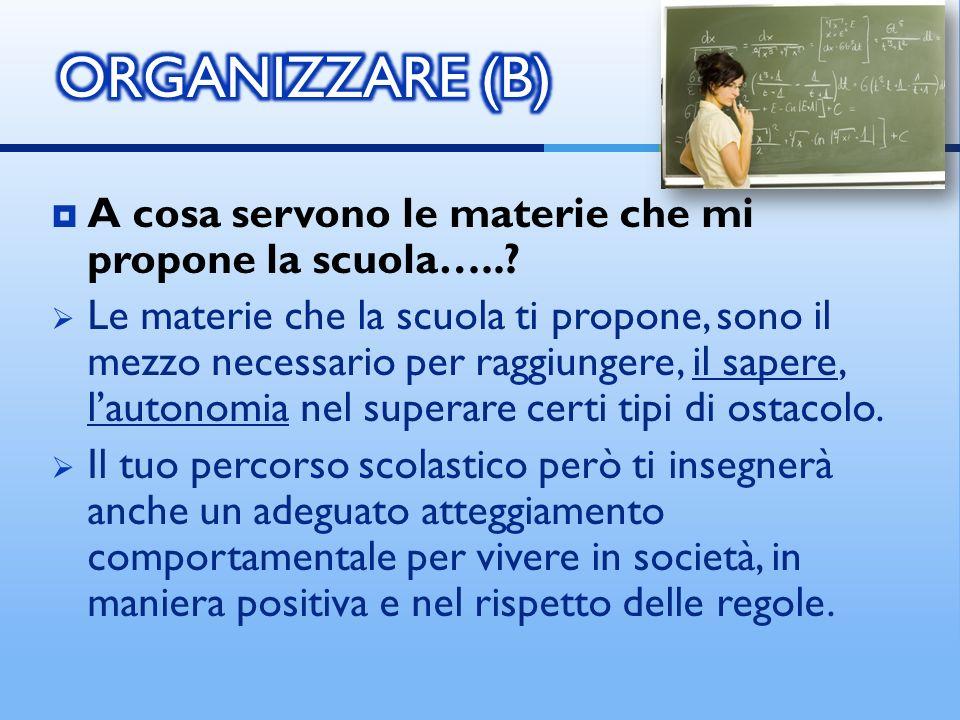 ORGANIZZARE (B) A cosa servono le materie che mi propone la scuola…..