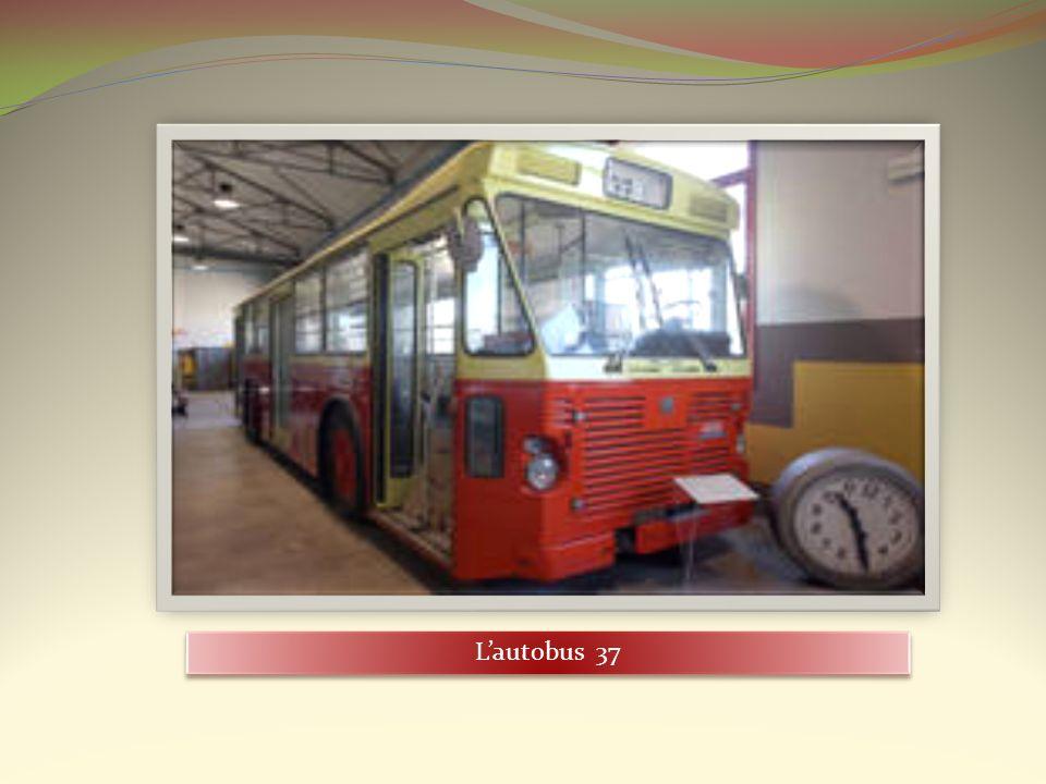 L'autobus 37