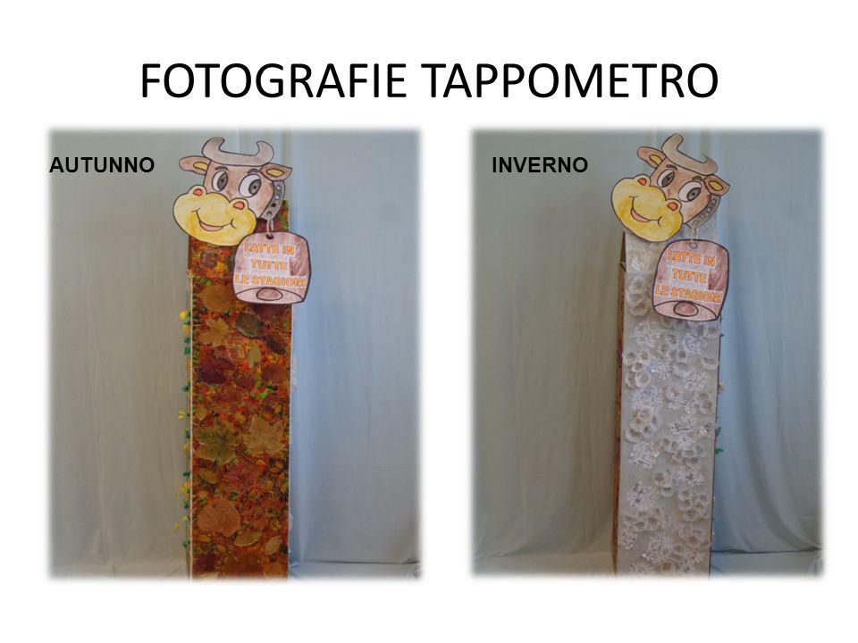 FOTOGRAFIE TAPPOMETRO