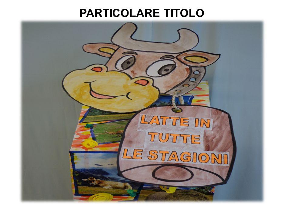 PARTICOLARE TITOLO
