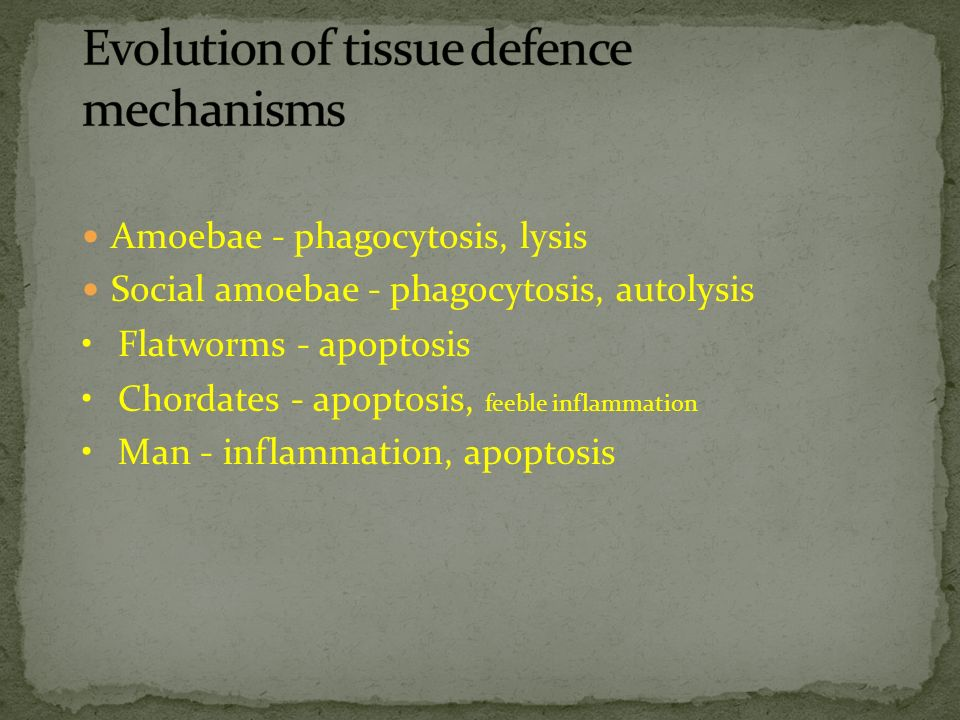 Evolution of tissue defence mechanisms