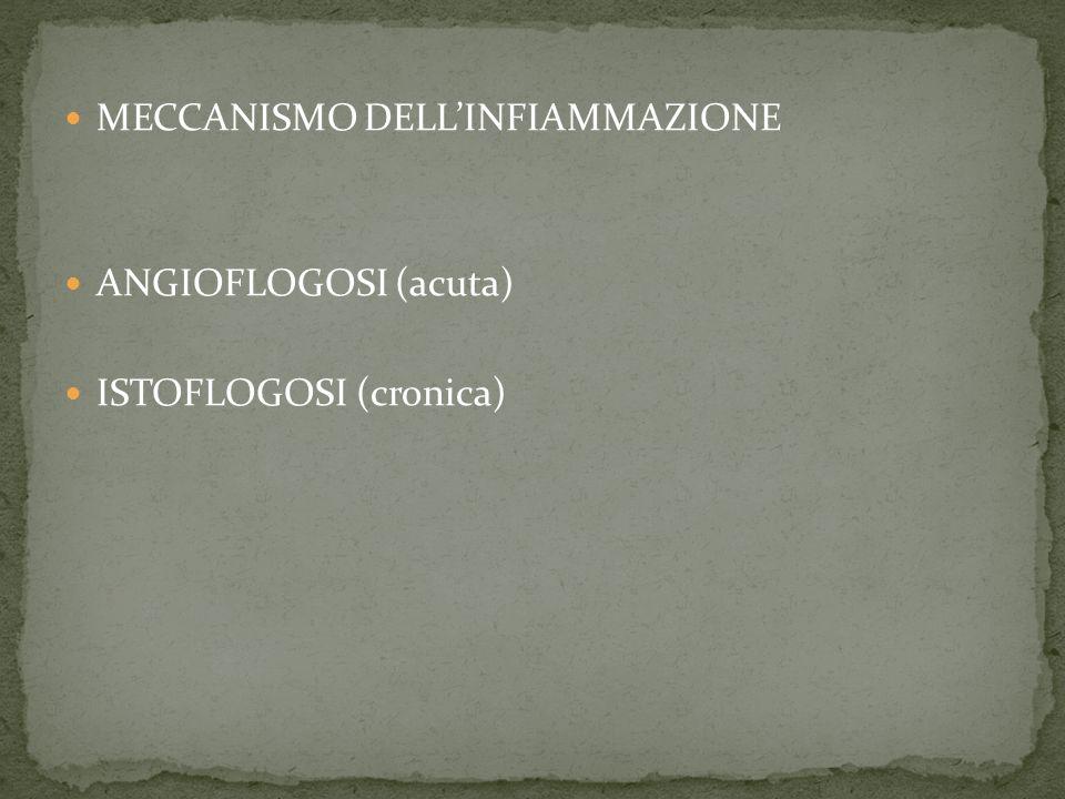 MECCANISMO DELL'INFIAMMAZIONE