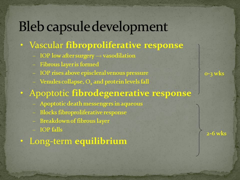 Bleb capsule development