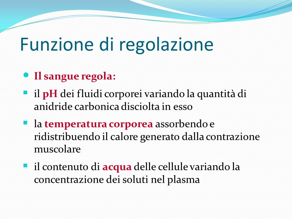 Funzione di regolazione