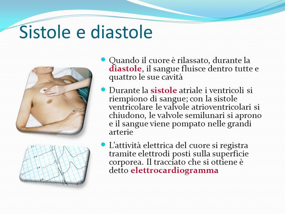 Sistole e diastole Quando il cuore è rilassato, durante la diastole, il sangue fluisce dentro tutte e quattro le sue cavità.