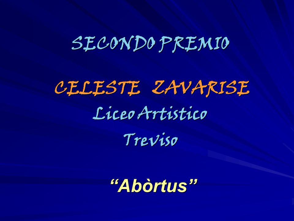SECONDO PREMIO CELESTE ZAVARISE Liceo Artistico Treviso Abòrtus