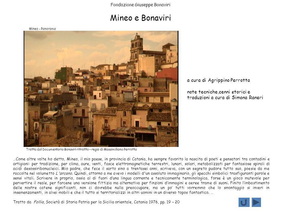 Fondazione Giuseppe Bonaviri Mineo e Bonaviri