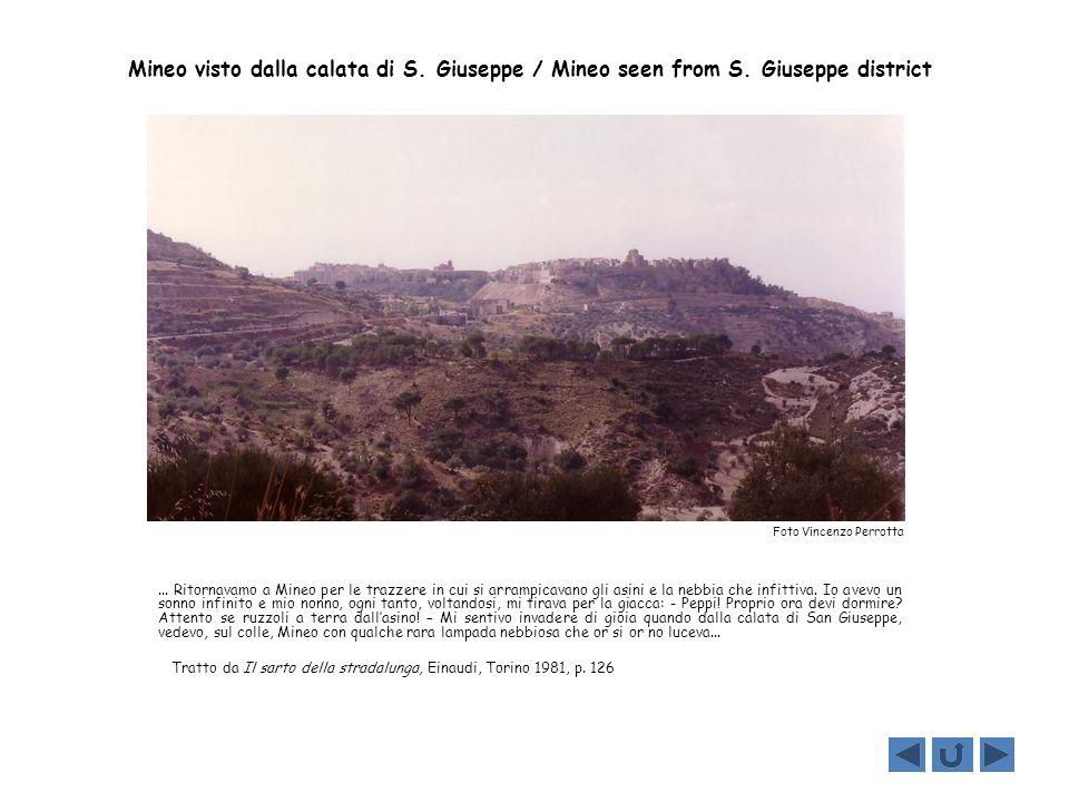 Mineo visto dalla calata di S. Giuseppe / Mineo seen from S