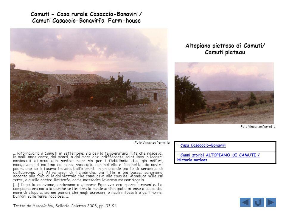 Altopiano pietroso di Camuti/ Camuti plateau