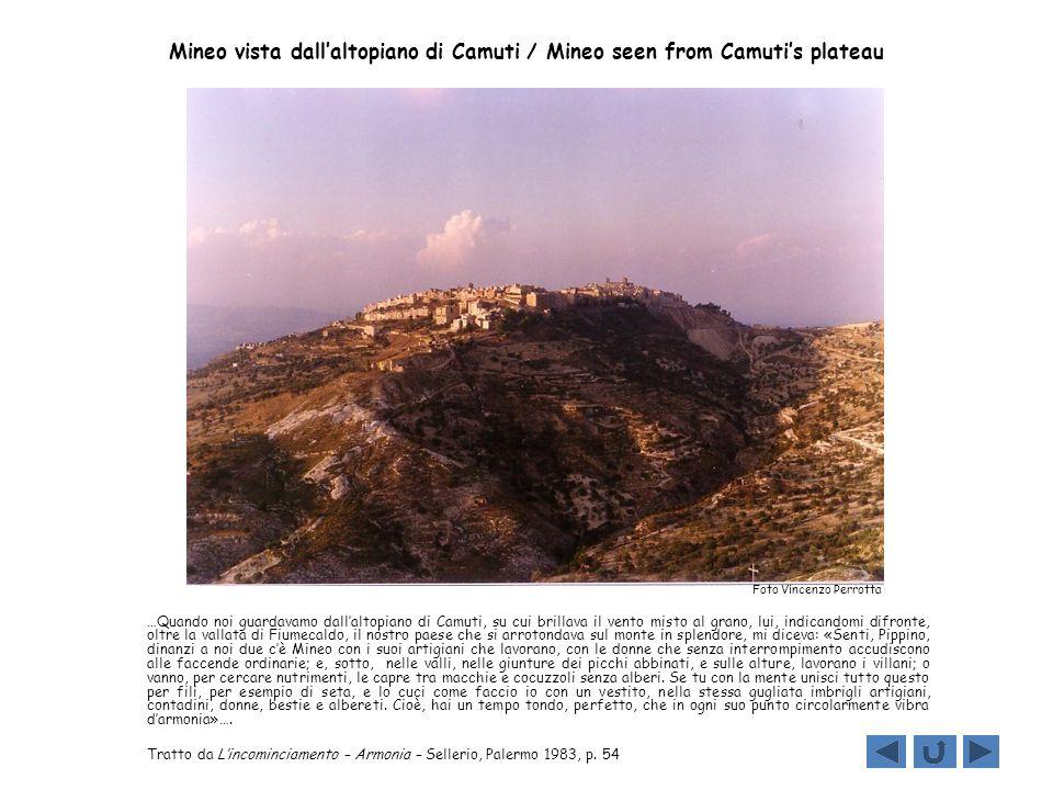 Mineo vista dall'altopiano di Camuti / Mineo seen from Camuti's plateau