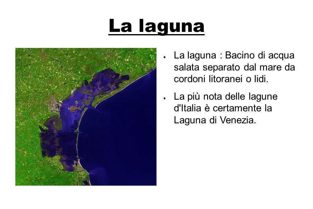 La laguna La laguna : Bacino di acqua salata separato dal mare da cordoni litoranei o lidi.