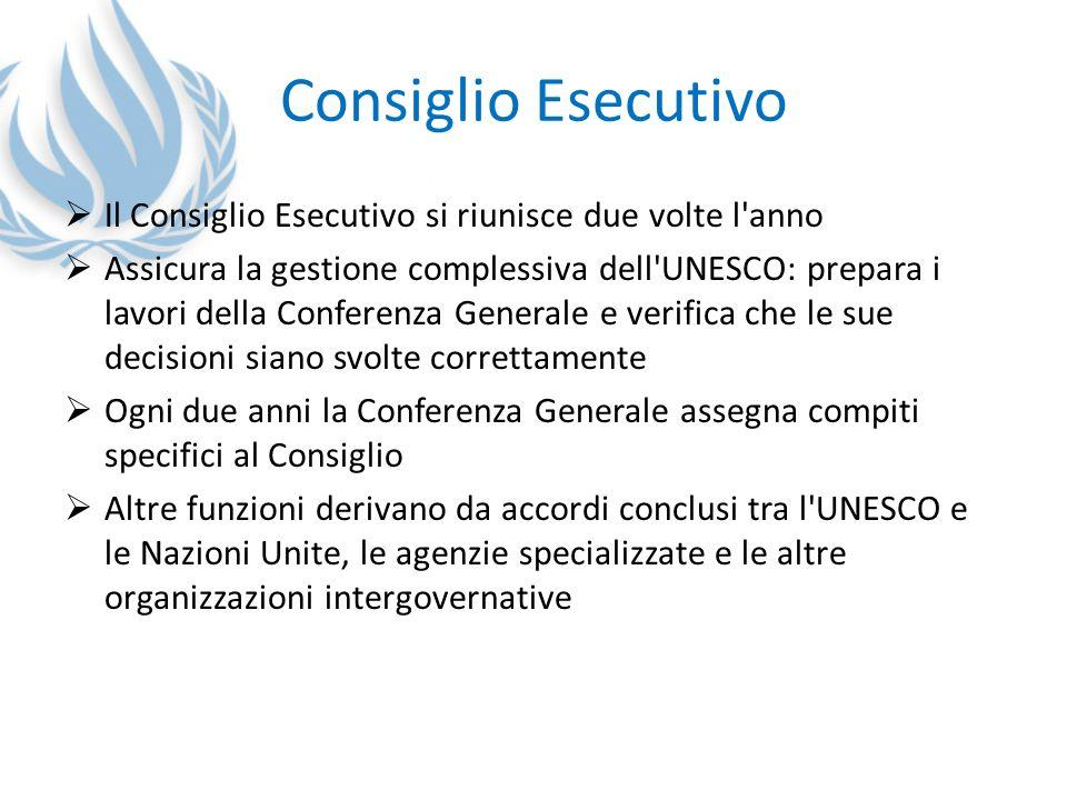Consiglio Esecutivo Il Consiglio Esecutivo si riunisce due volte l anno.