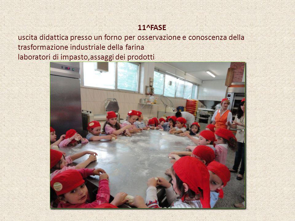 11^FASE uscita didattica presso un forno per osservazione e conoscenza della trasformazione industriale della farina laboratori di impasto,assaggi dei prodotti
